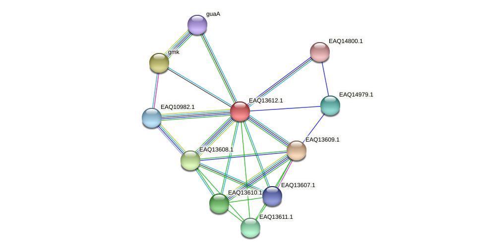 RB2654_02824 protein (Maritimibacter alkaliphilus) - STRING interaction network
