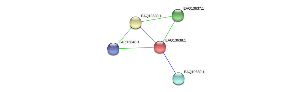 RB2654_02954 protein (Maritimibacter alkaliphilus) - STRING interaction network