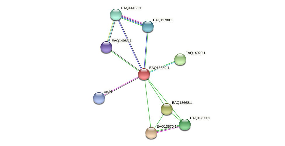 RB2654_03109 protein (Maritimibacter alkaliphilus) - STRING interaction network