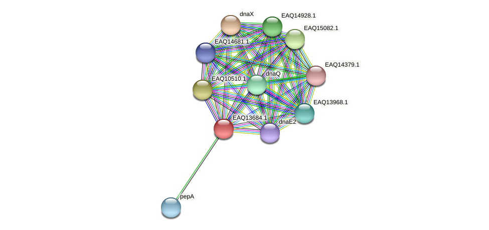 RB2654_03184 protein (Maritimibacter alkaliphilus) - STRING interaction network