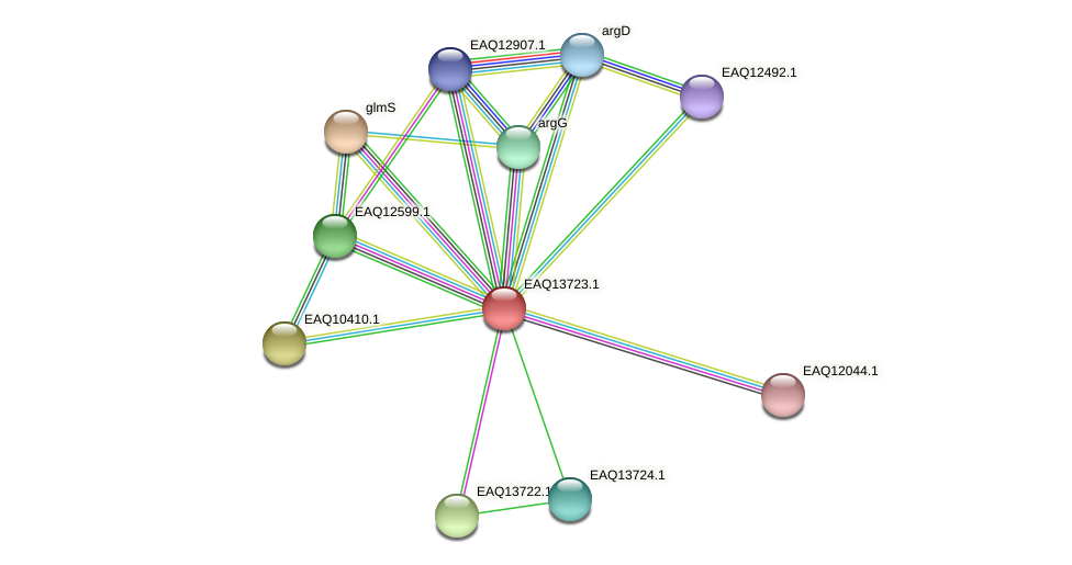 RB2654_03379 protein (Maritimibacter alkaliphilus) - STRING interaction network