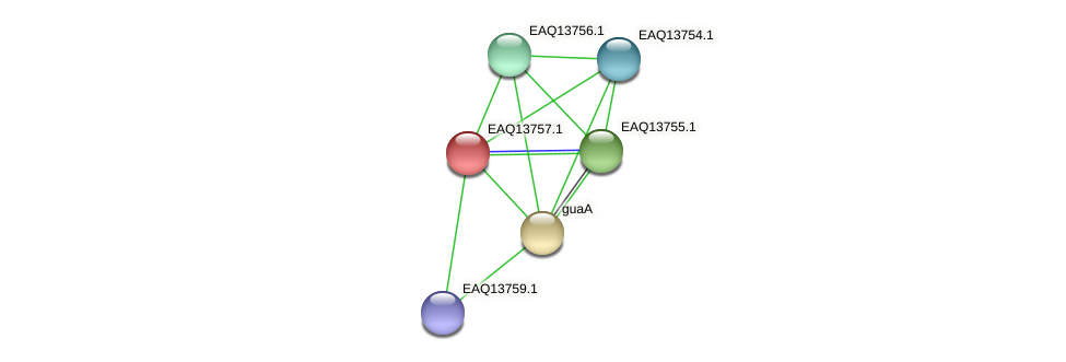 RB2654_03549 protein (Maritimibacter alkaliphilus) - STRING interaction network