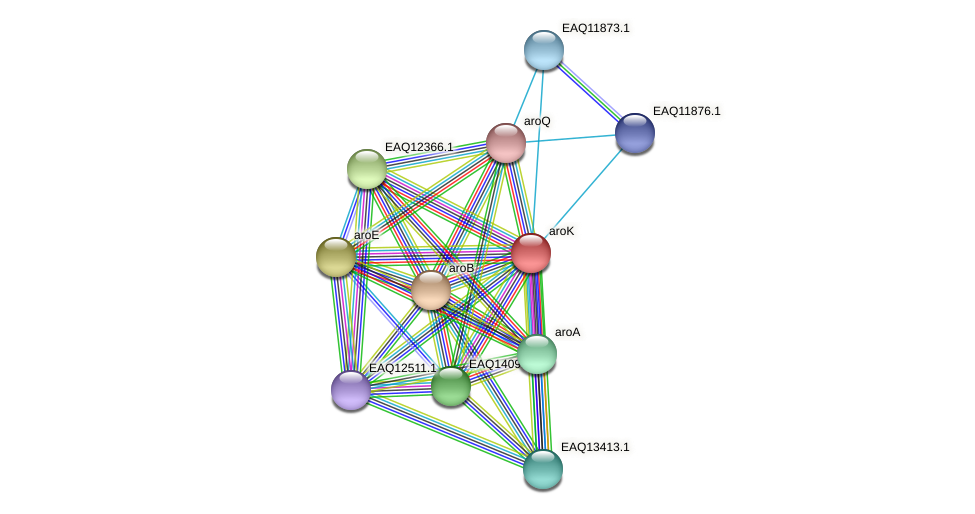 RB2654_04209 protein (Maritimibacter alkaliphilus) - STRING interaction network