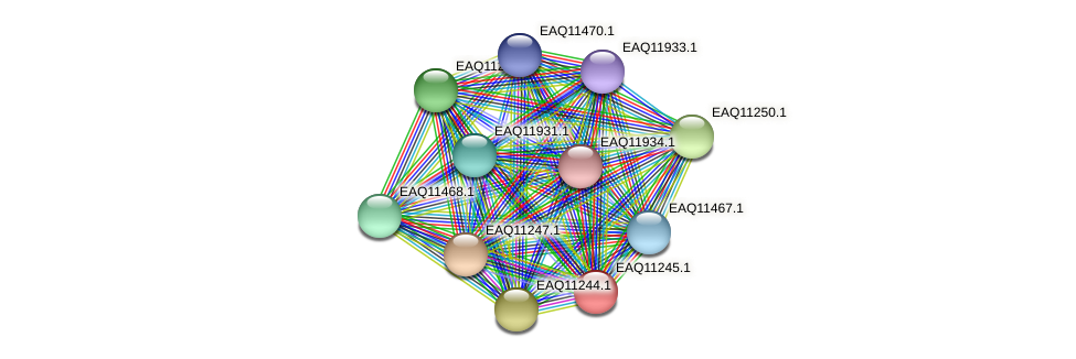 RB2654_04431 protein (Maritimibacter alkaliphilus) - STRING interaction network