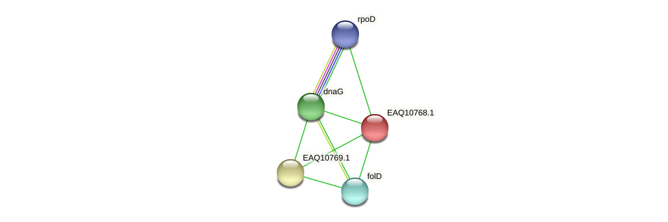 RB2654_05587 protein (Maritimibacter alkaliphilus) - STRING interaction network