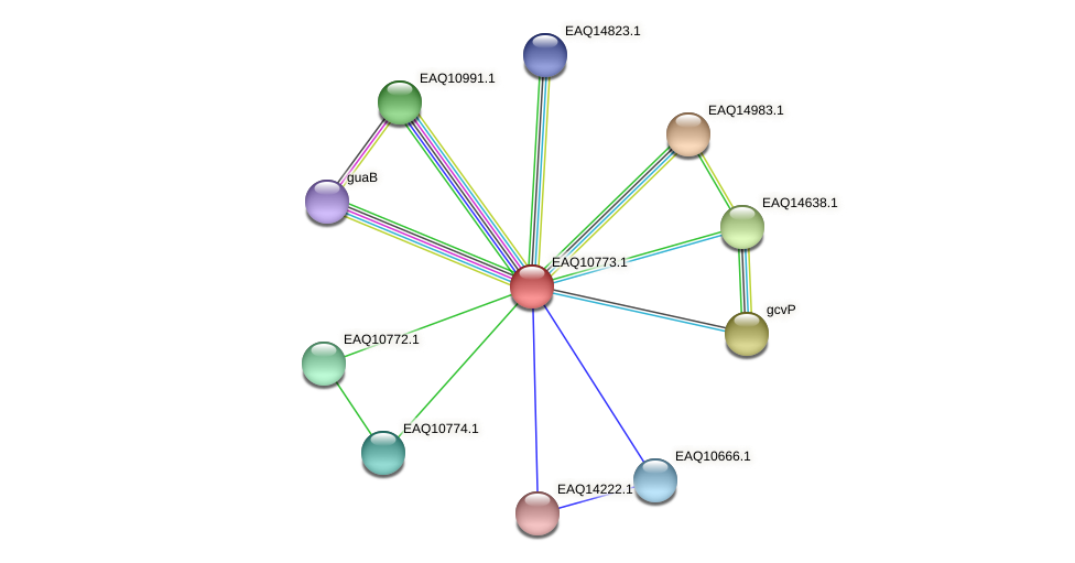 RB2654_05612 protein (Maritimibacter alkaliphilus) - STRING interaction network