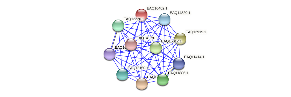 RB2654_05767 protein (Maritimibacter alkaliphilus) - STRING interaction network