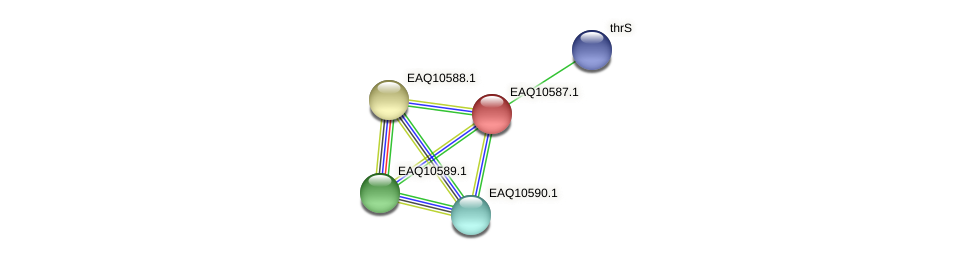 RB2654_05902 protein (Maritimibacter alkaliphilus) - STRING interaction network