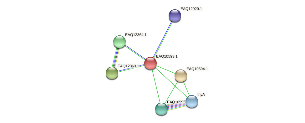 RB2654_05932 protein (Maritimibacter alkaliphilus) - STRING interaction network