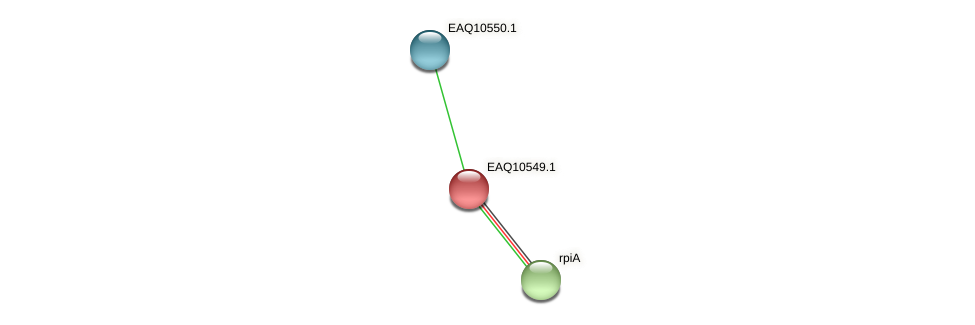 RB2654_05987 protein (Maritimibacter alkaliphilus) - STRING interaction network