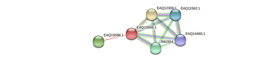 RB2654_06157 protein (Maritimibacter alkaliphilus) - STRING interaction network