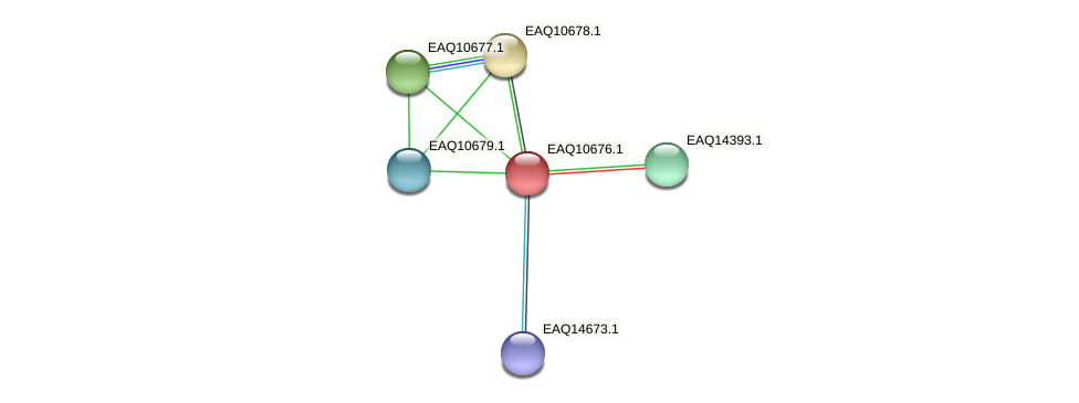 RB2654_06197 protein (Maritimibacter alkaliphilus) - STRING interaction network