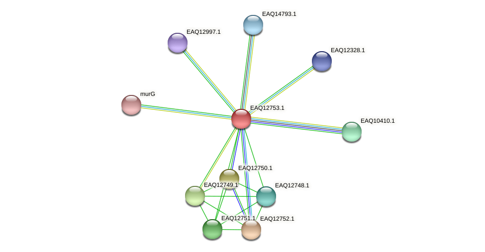 RB2654_06574 protein (Maritimibacter alkaliphilus) - STRING interaction network