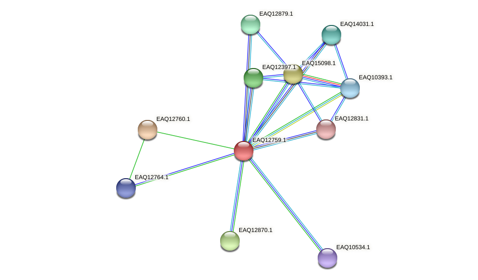 RB2654_06604 protein (Maritimibacter alkaliphilus) - STRING interaction network
