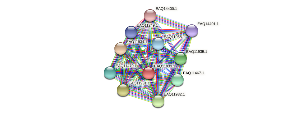 RB2654_07621 protein (Maritimibacter alkaliphilus) - STRING interaction network