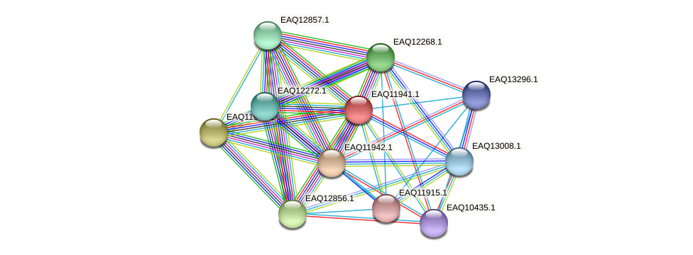 RB2654_07661 protein (Maritimibacter alkaliphilus) - STRING interaction network