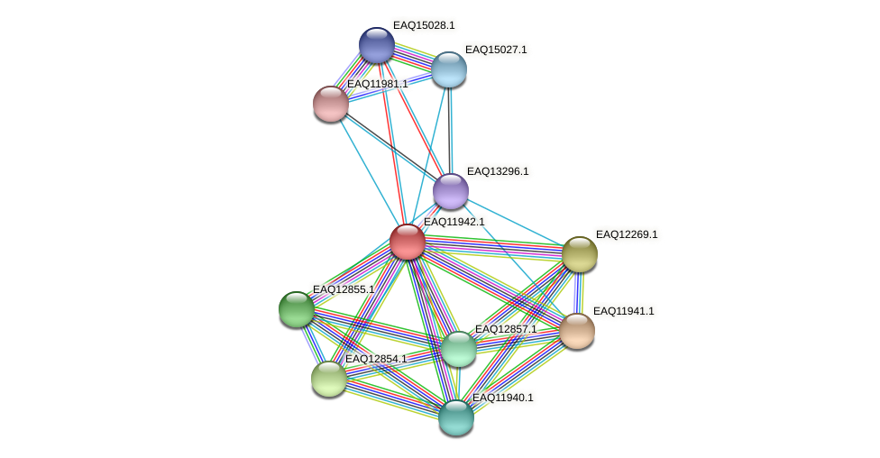 RB2654_07666 protein (Maritimibacter alkaliphilus) - STRING interaction network