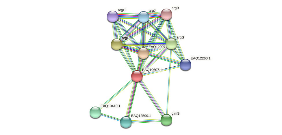 RB2654_07890 protein (Maritimibacter alkaliphilus) - STRING interaction network
