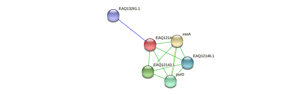 RB2654_08062 protein (Maritimibacter alkaliphilus) - STRING interaction network