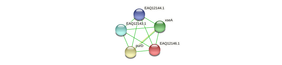 RB2654_08072 protein (Maritimibacter alkaliphilus) - STRING interaction network