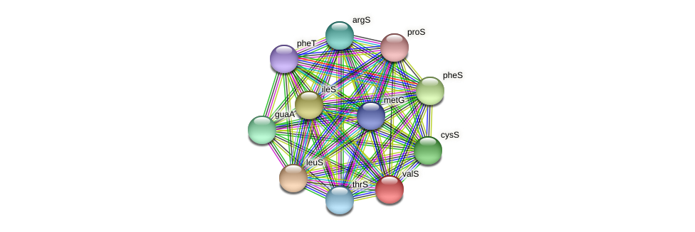 valS protein (Maritimibacter alkaliphilus) - STRING interaction network