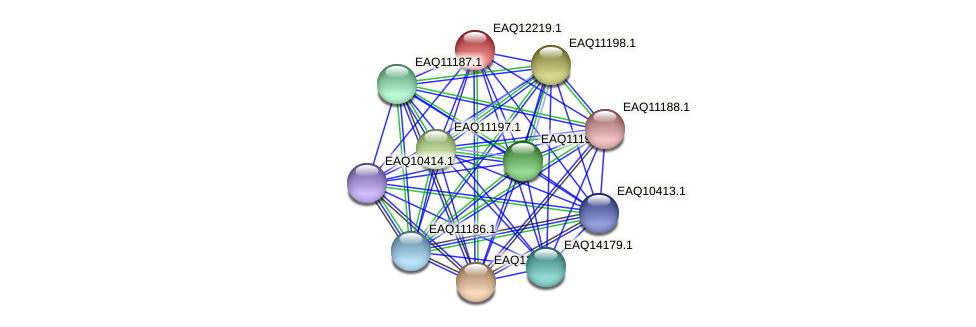 RB2654_08437 protein (Maritimibacter alkaliphilus) - STRING interaction network