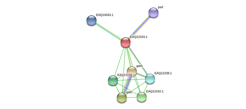 RB2654_08557 protein (Maritimibacter alkaliphilus) - STRING interaction network