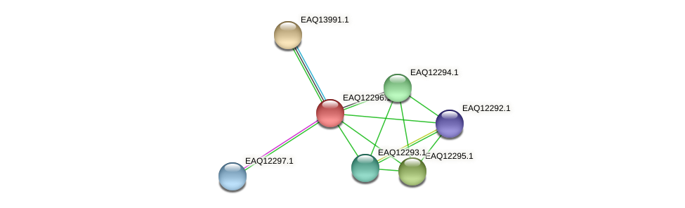 RB2654_08822 protein (Maritimibacter alkaliphilus) - STRING interaction network