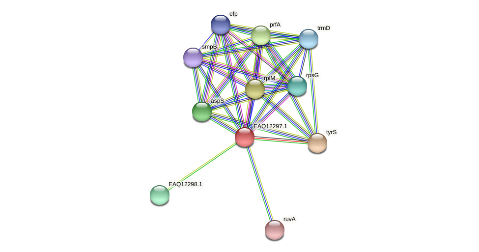 RB2654_08827 protein (Maritimibacter alkaliphilus) - STRING interaction network