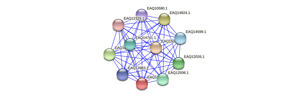 RB2654_08957 protein (Maritimibacter alkaliphilus) - STRING interaction network