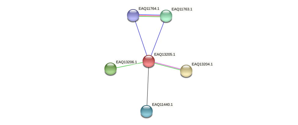 RB2654_09054 protein (Maritimibacter alkaliphilus) - STRING interaction network