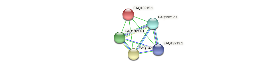 RB2654_09104 protein (Maritimibacter alkaliphilus) - STRING interaction network