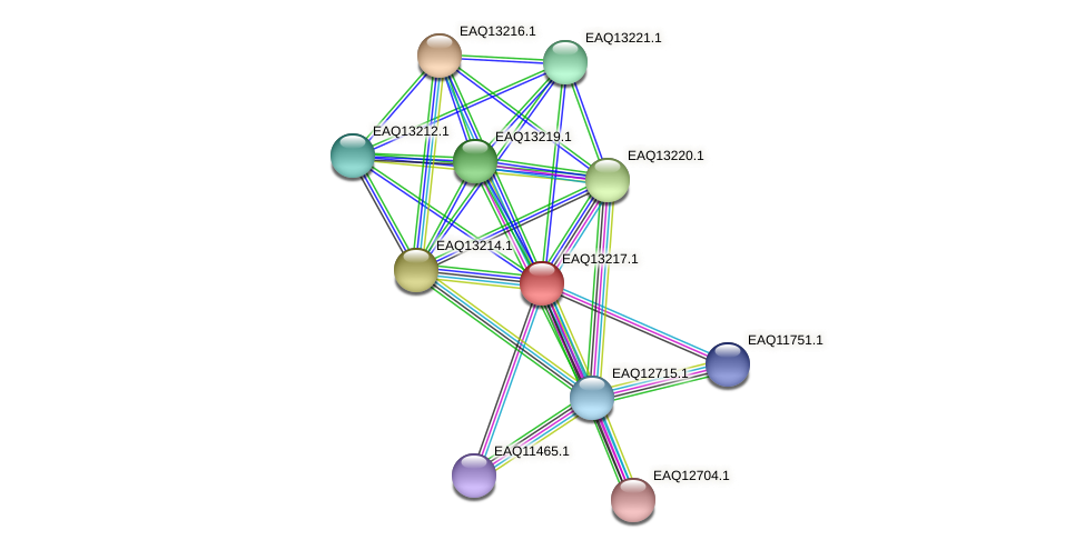 RB2654_09114 protein (Maritimibacter alkaliphilus) - STRING interaction network