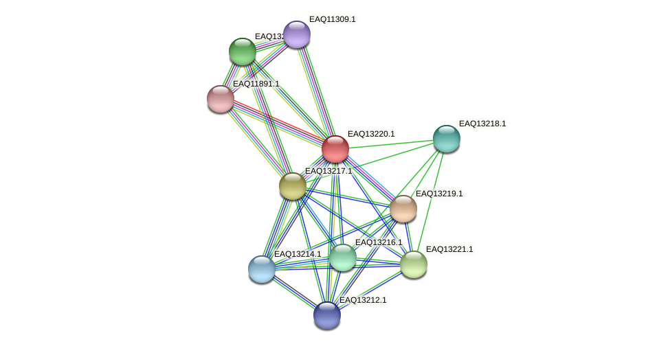 RB2654_09129 protein (Maritimibacter alkaliphilus) - STRING interaction network