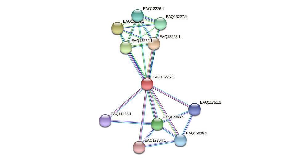 RB2654_09154 protein (Maritimibacter alkaliphilus) - STRING interaction network
