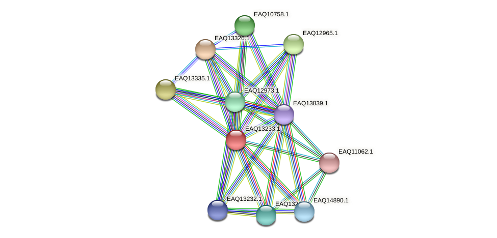 RB2654_09194 protein (Maritimibacter alkaliphilus) - STRING interaction network
