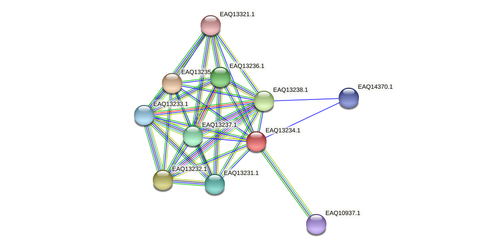 RB2654_09199 protein (Maritimibacter alkaliphilus) - STRING interaction network