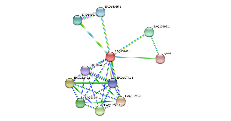 RB2654_09239 protein (Maritimibacter alkaliphilus) - STRING interaction network