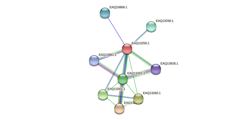RB2654_09324 protein (Maritimibacter alkaliphilus) - STRING interaction network