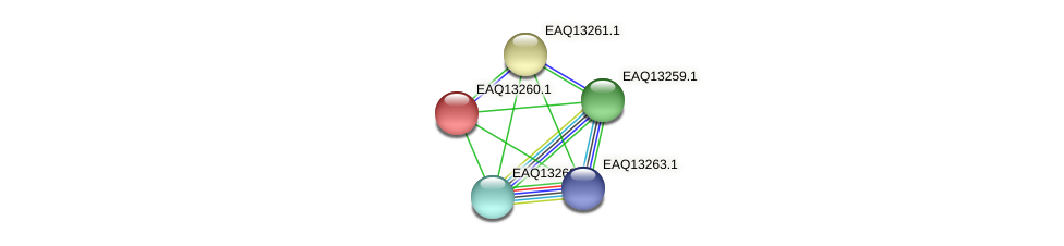 RB2654_09329 protein (Maritimibacter alkaliphilus) - STRING interaction network