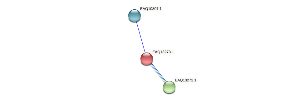 RB2654_09394 protein (Maritimibacter alkaliphilus) - STRING interaction network