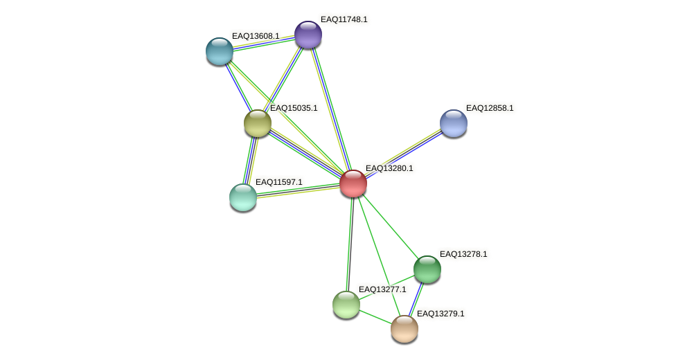 RB2654_09429 protein (Maritimibacter alkaliphilus) - STRING interaction network