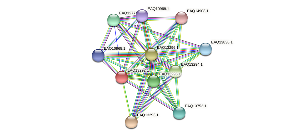 RB2654_09489 protein (Maritimibacter alkaliphilus) - STRING interaction network