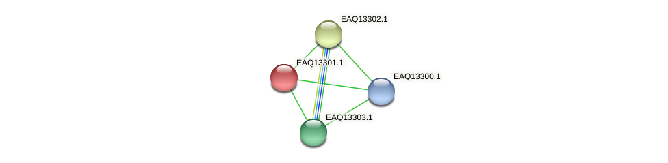 RB2654_09534 protein (Maritimibacter alkaliphilus) - STRING interaction network