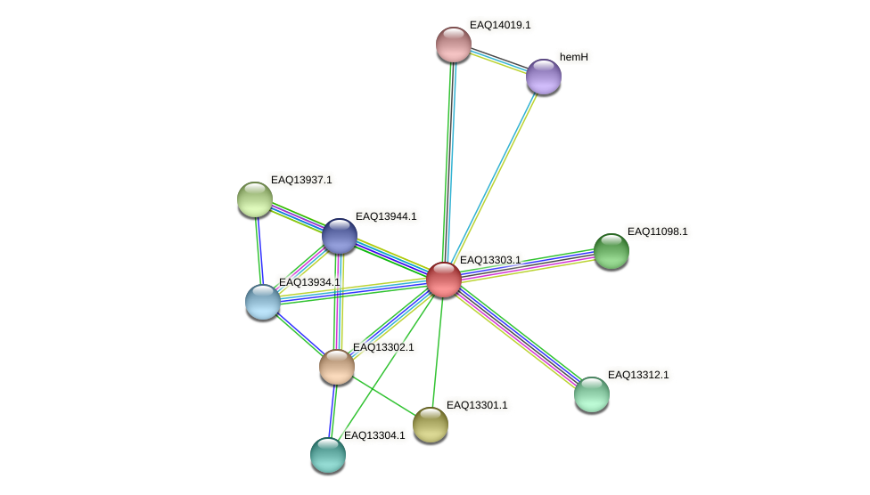 RB2654_09544 protein (Maritimibacter alkaliphilus) - STRING interaction network