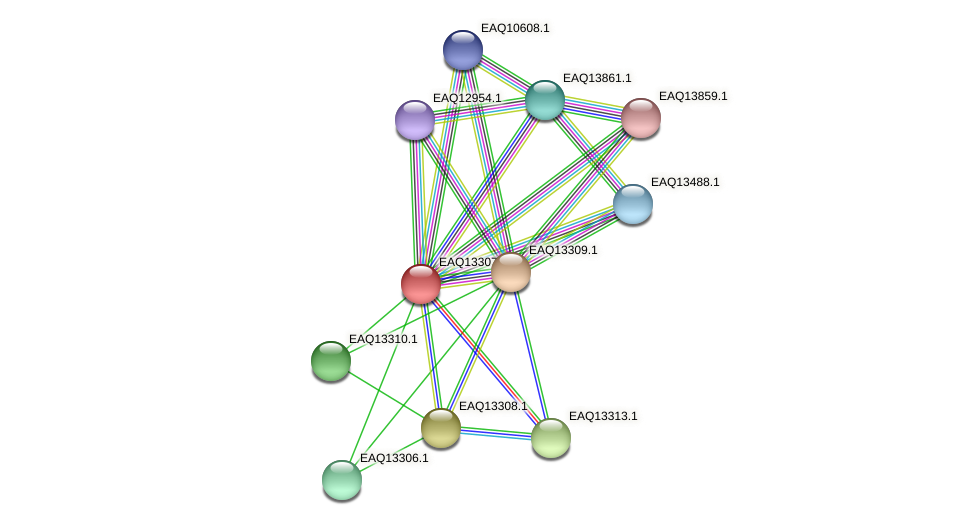 RB2654_09564 protein (Maritimibacter alkaliphilus) - STRING interaction network