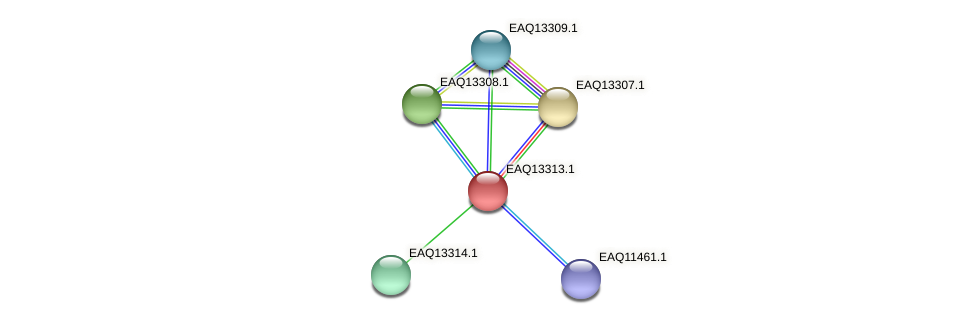 RB2654_09594 protein (Maritimibacter alkaliphilus) - STRING interaction network