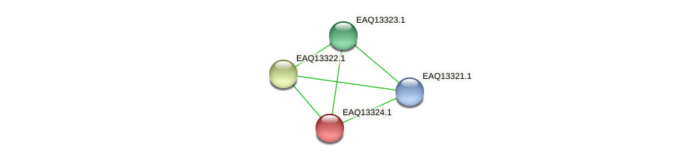 RB2654_09649 protein (Maritimibacter alkaliphilus) - STRING interaction network