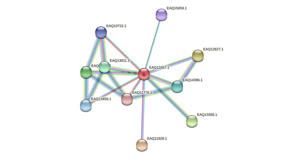 RB2654_09814 protein (Maritimibacter alkaliphilus) - STRING interaction network