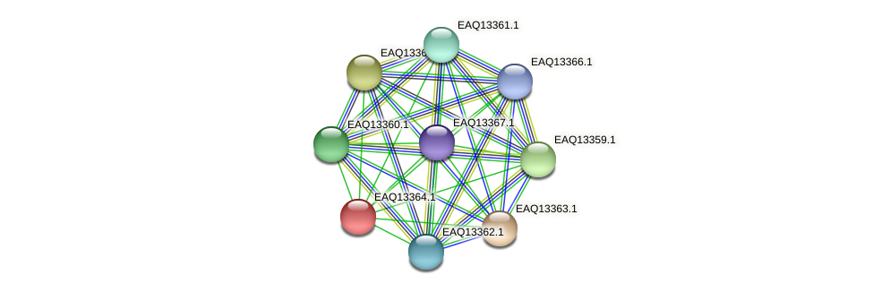 RB2654_09849 protein (Maritimibacter alkaliphilus) - STRING interaction network